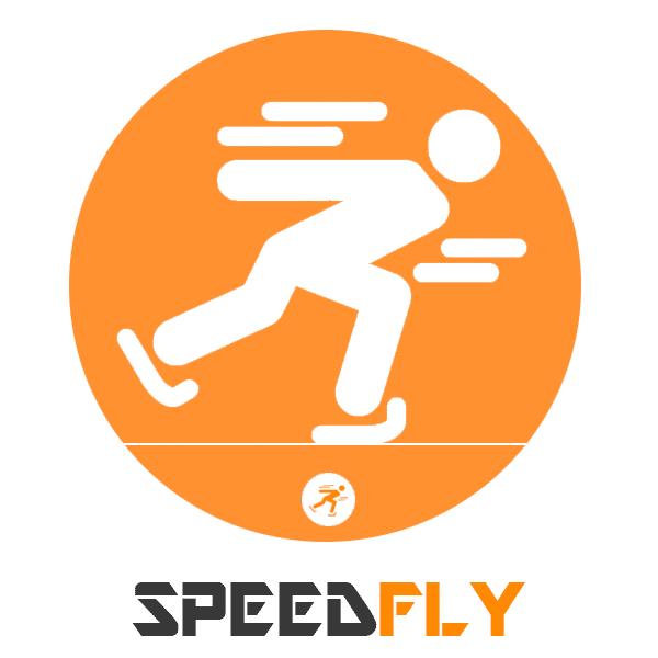 Thème Speedfly 3 en 1 pour Shopify