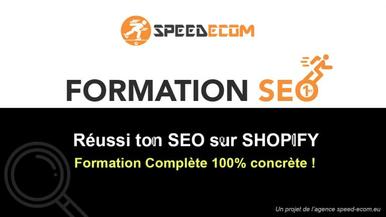 Formation SEO Dropshipping Shopify